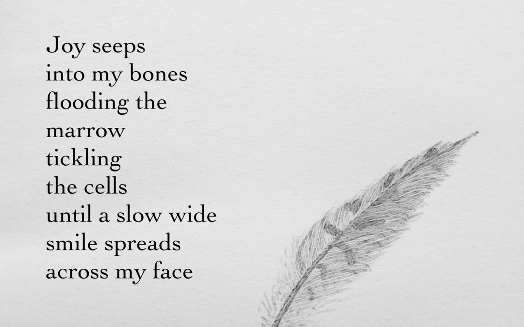 An illustrated poem by Juliet Fay, Joy with a pencil drawn feather